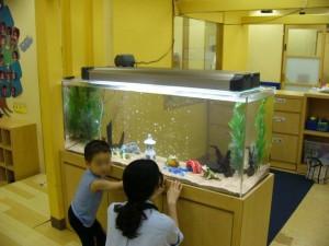 お魚を身近に感じて頂き、子供達の自尊心を豊かにさせます