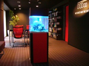 かっこいいオフィスに相応しいオシャレな水槽