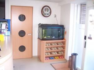 お客様の用途に合わせ、水槽台を一工夫致しまた