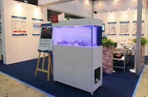 短期イベント 話題性の高い展示水槽!
